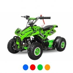 "Pocket quad Dragon 4"" - Vert"