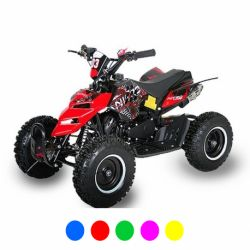 "Pocket quad Raptor 6"" E-Start - Bleu"