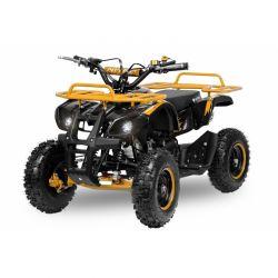 Pocket quad Torino 6