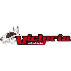 Casque cross victoria bull off road evo vert taille L