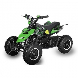 "Pocket quad Raptor 6"" E-Start - Vert"