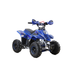 Quad Puma 110cc - Bleu