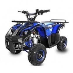 Quad Torondo 110cc - Bleu