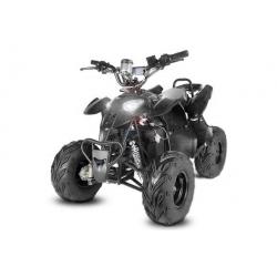 "Quad Razor Eco 6"" 800W - Noir"