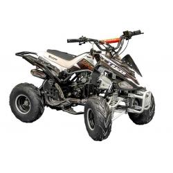 Quad X Race 125cc 7