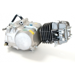 Motore YX 125cc - DP - Dirt bike / Pit bike / Mini moto